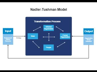 Nadler-Tushman Model