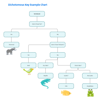 Dichotomous Key Example
