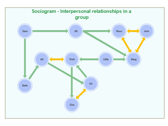 Interpersonal Relationships Sociogram