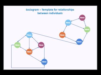 Individual Relationship Sociogram