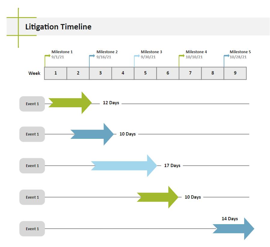 Project Litigation Timeline