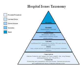 Hospital Issue Taxonomy