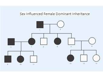 Sex Influenced Female Dominant Inheritance