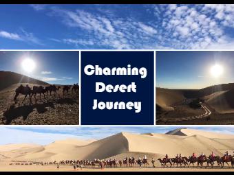 Desert Travel Photo Collage