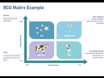 BCG Matrix Example