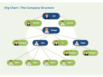 Org Chart - The Company Structure