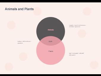 Venn Diagram - Animals and Plants