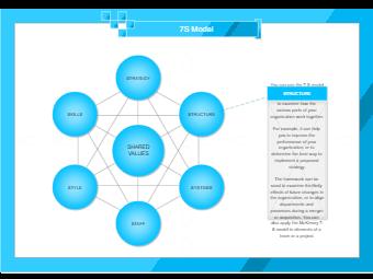 Business 7S Model