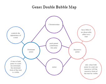 Genes Double Bubble Map