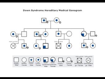 Down Syndrome Hereditary Medical Genogram