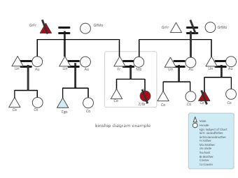 Kinship diagram example