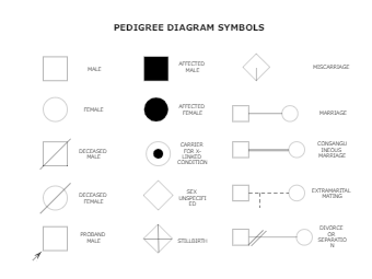 PEDIGREE DIAGRAM SYMBOLS
