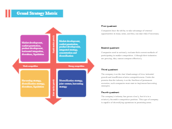 Grand Strategy Matrix