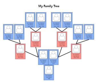 My Family Tree Graphic Organizer