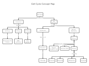 Cell Cycle Concept Map Template
