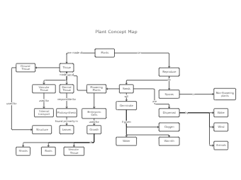 Plant Concept Map Template