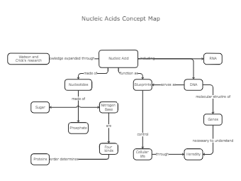 Nucleic Acid Concept Map Template