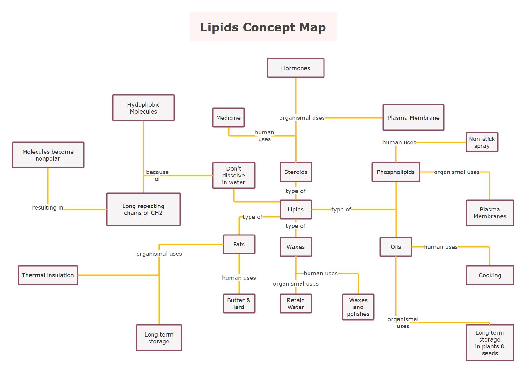 Lipids Concept Map Template
