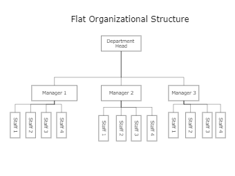 Flat Organizational Structure Template