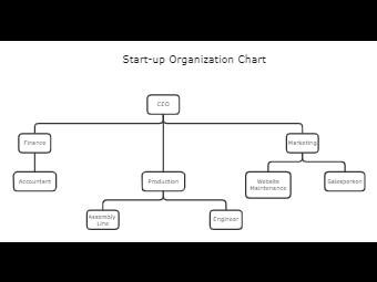 Start Up Organization Chart Template