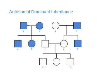 Dominant Inheritance Genogram