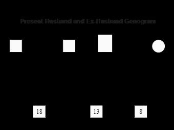 Present Husband and Ex-Husband Genogram