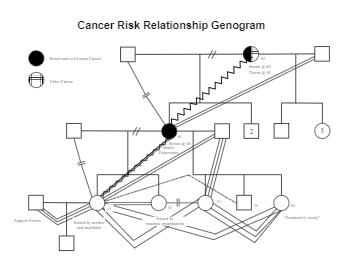 Cancer Risk Relationship Genogram