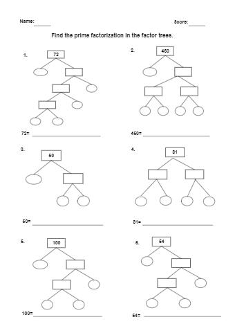 Factor Tree Worksheet Sketch