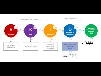 Business VRIO Model