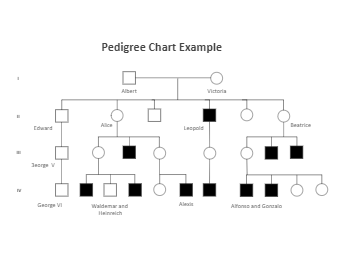 Family Pedigree Chart