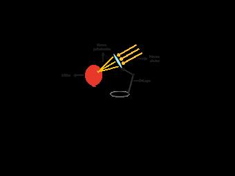 Experimento óptico simple: el efecto de enfoque de una lupa