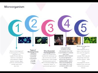 Microorganism Diagram