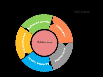 LQS Cycle