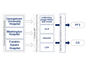 Electronic Medical Records Flowchart