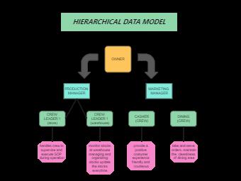 Hierarchical Organization Chart