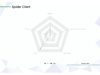 Spider Chart Example