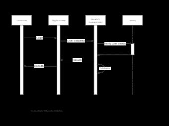 IT Developer Sequence Diagram
