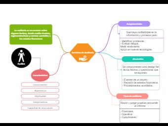 Audit Services Concept Map