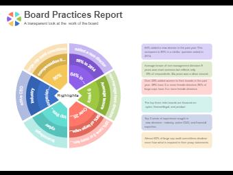 Board Pratices Report