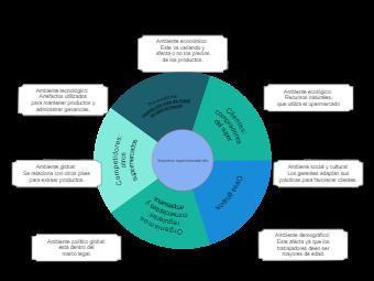 Organization Environment Diagram