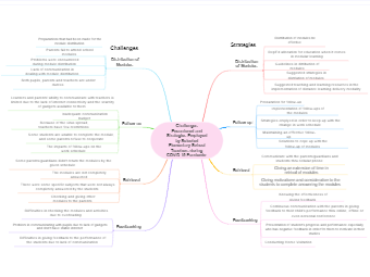 Some Challenges and Strategies during COVID-19 Pandemic Mind Map
