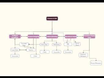 TradeVisor LTD Org Chart