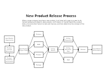 New Product Release Process