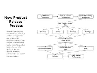 Black White New Product Release Process