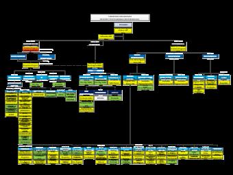 IPB Organization Chart