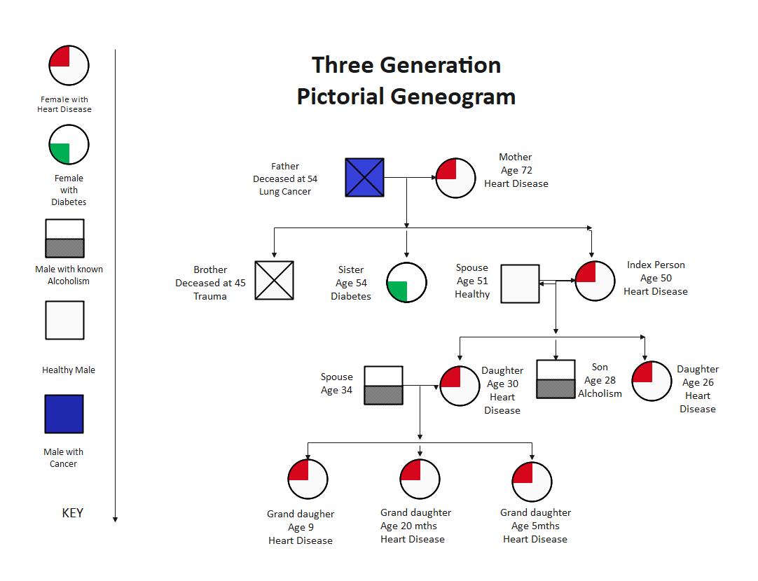Genogram Model