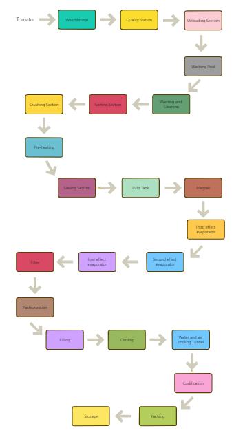 Tomato Process Flowchart