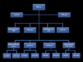 Structure of School Staff