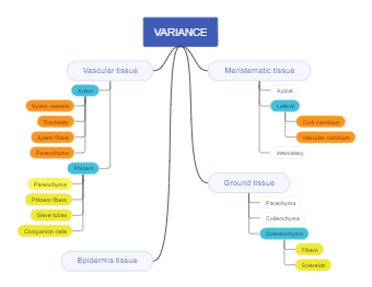 Concept Map about Variance