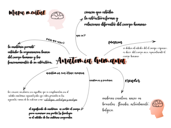 Aasthetic Mind Map